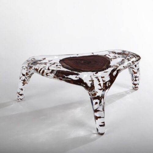 Crystal and Branches Coffee Table
